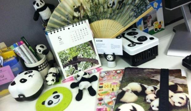 【識心靈】熊貓辦公室